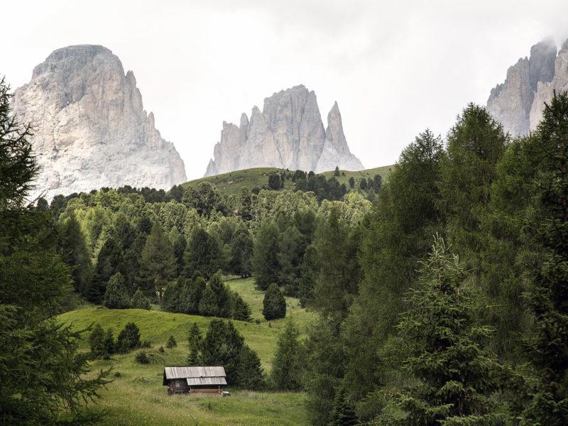 Dolomiti e Biosfera